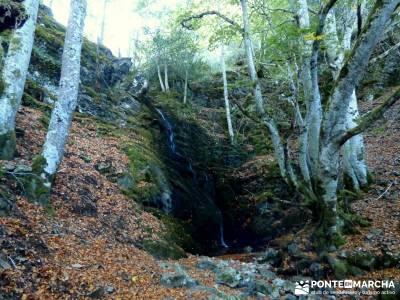Yacimientos Atapuerca - Sierra de la Demanda; caminata rápida beneficios para la salud